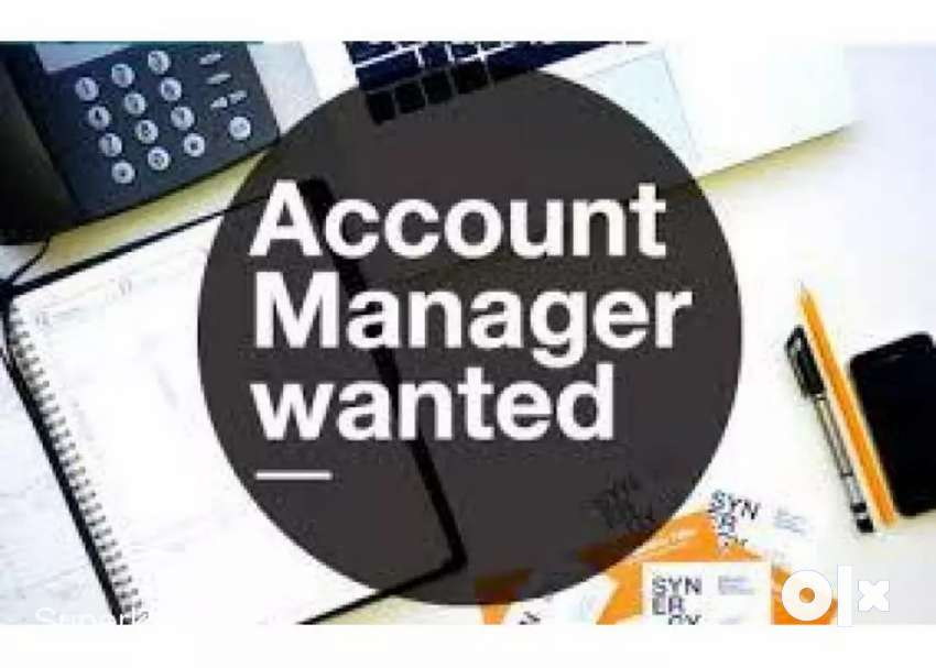 Image result for Accounts Manager