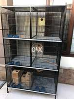 6 portion cage