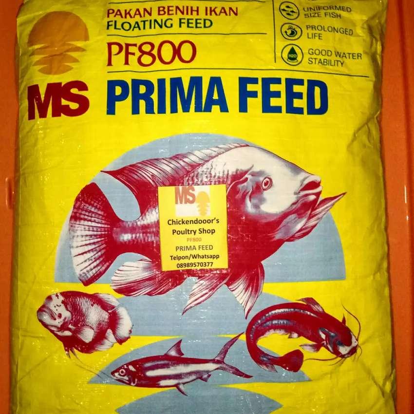 Pf 800 Pf800 Pelet Pellet Ikan Pakan Benih Bibit Lele Gurame Nila 10kg Hewan Peliharaan 754135843
