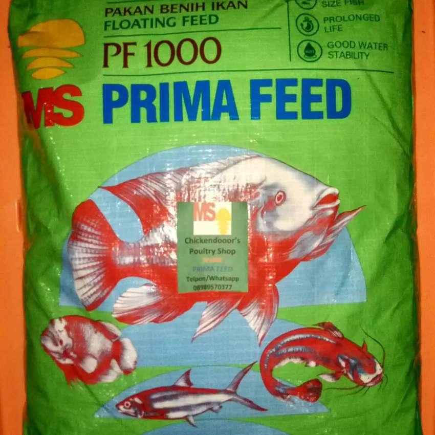 Pf 1000 Pf1000 Pelet Ikan Pakan Benih Bibit Lele Gurame Nila 10kg Hewan Peliharaan 754135187