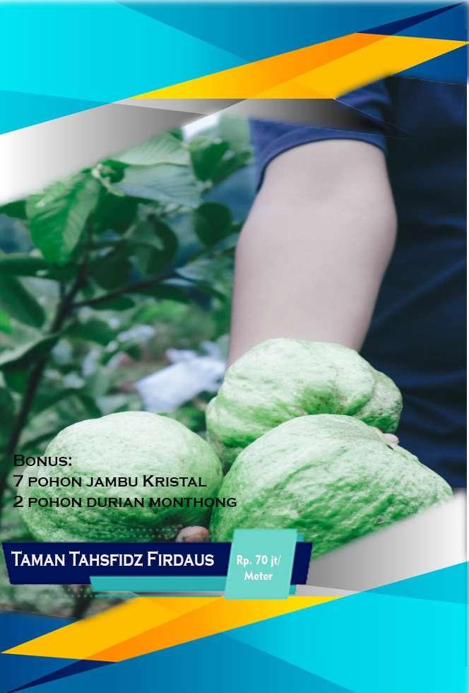 Nikmati Beragam Manfaat Dari Kebun Sendiri Invetasi Untuk Hari Tua Tanah 820158116