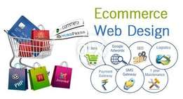 Design and Development for ECommerce Websites by Get Pro Design