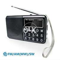 PRUNUS Portable SW FM AM MW SD USB MP3 radio with neodymium speaker. L