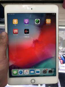 Ipad Mini 4 16gb Wifi Only