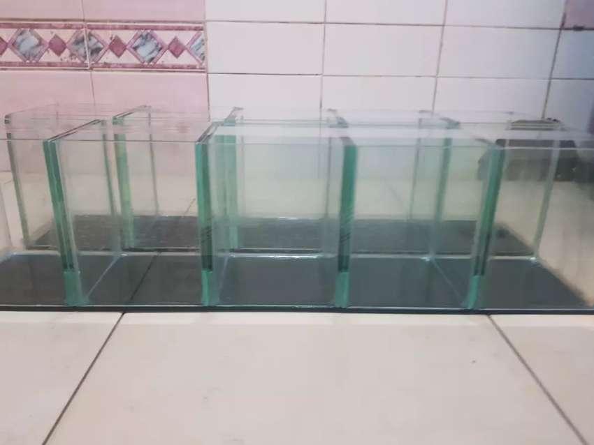 Jual Aquarium Cocok Buat Ikan Cupang Dan Ikan Kecil Lainnya Hewan Peliharaan 789699791