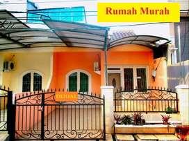 Hibrida Dijual Rumah Dijual Murah Cari Rumah Di Indonesia Olx Co Id