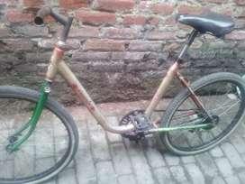 Sepeda 24 Jual Sepeda Lainnya Terlengkap Di Malang Kota Olx Co Id
