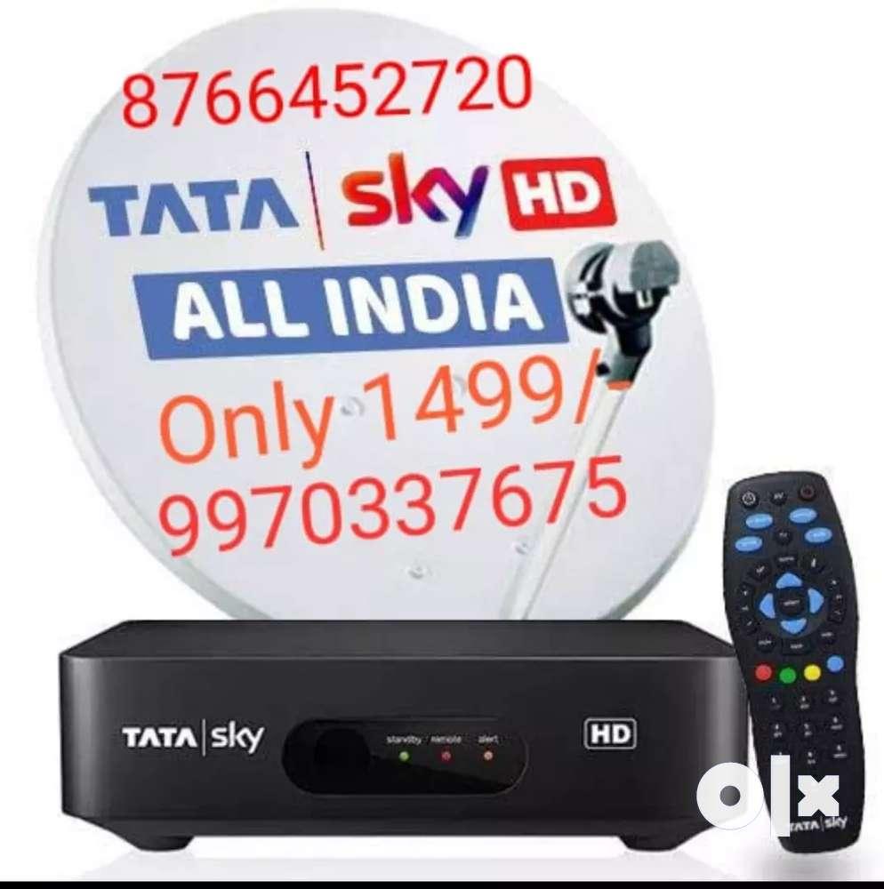 New Dish Tv Videocoon Tata Sky Hd Connection Only 1499 À¤Ÿ À¤µ À¤µ À¤¡ À¤¯ À¤'ड À¤¯ 1608549337