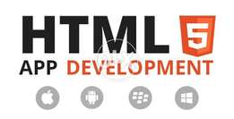 Our HTML5 Development by Profeesional Developers at Lowest Price