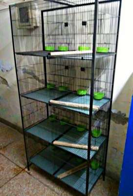 New Birds Cages