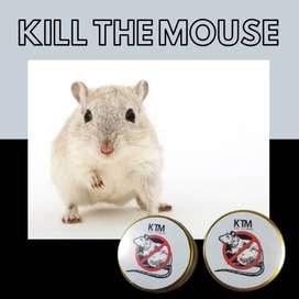 Basmi tikus cocok untuk di gudang kos rumah kantor kontrakan ruko hote