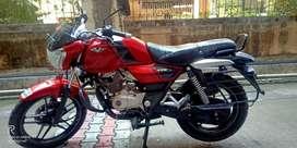Single handed fully maintained Bajaj V15 Red 150 CC
