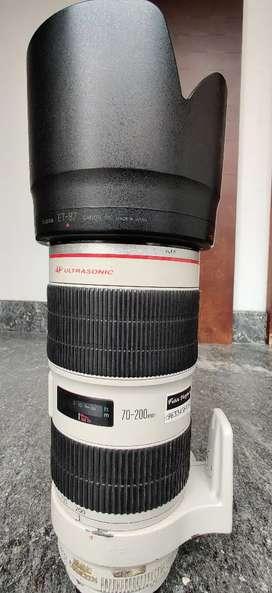 Canon 70-200mm Teli Lense IS2