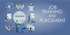 training and placement in software company