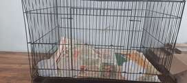 Pet cage for pets