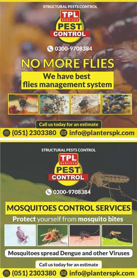 Flies and Mosquitoes control services