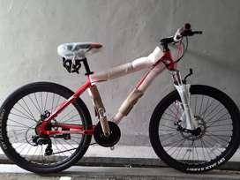 Sepeda pacific MTB impert 100 26