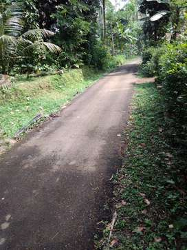 Tanah Luas 10 Ubin di Langgongsari Purwokerto