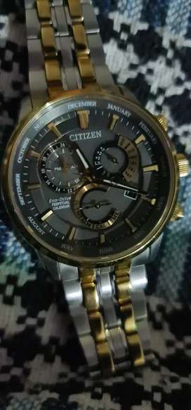citizen eco drive water proof watch