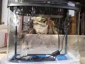 Rs480a aquarium 50 liter capicity
