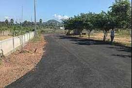Open land at Lalitha nagar for sale