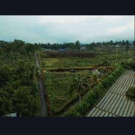 Dijual Cepat Tanah Strategis Subang Ciater TANPA PERANTARA