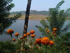 1 acre waterfront plot at Vythiri