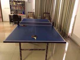 Table Tennis Foldable