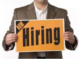 Urgent hiring for Ticketing executice