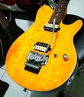 Gitar musicman model