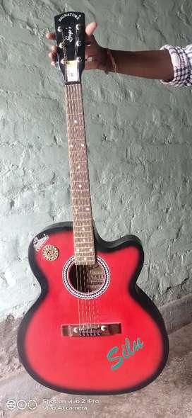 Signature brand guitar 5 month
