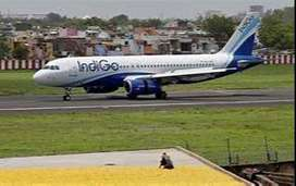 indiGo Airlines  looking for bright, energetic candidates to join as C