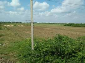 Commercial plot for lease