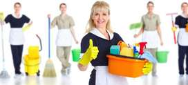 Domestic Help Company for house works i:e Baby sitter, Nanny, Maids.