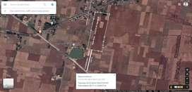 12 Bigha Land For Godam Or Warehouse