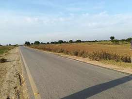 Best agricultural land near Main chakwal road and chakbeli road