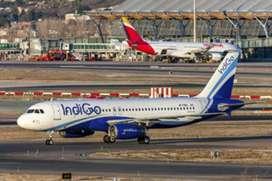 Hiring urgent for ground staff in IndiGo Airlines