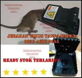 Perangkap Jebakan Tikus Tanpa Racun SMD