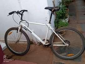 BTWN CYCLE