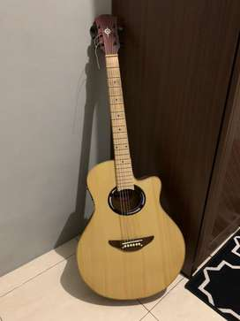 Gitar APX500II Akustik Elektrik Custom