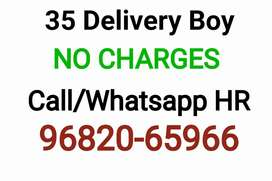 Urgent Opening for Food Delivery  Boy