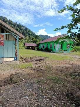 jual tanah & rumah - pinggir trans sulawesi, dekat wisata pehabala