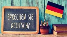 Language ninjas-German & Spanish