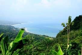 Tanah CISOLOK SUKABUMI PASIRBARU Jawa Barat