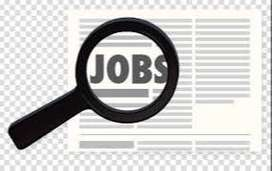 Required  Accountant   for  Private Limited  Company