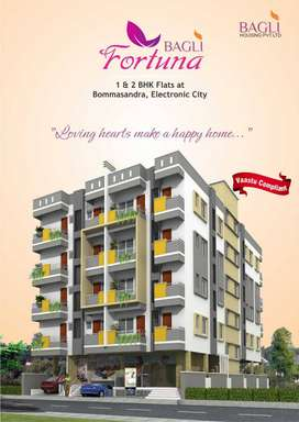 2 BHK 862sq ft Ready to Move Apartment in Electronic City, Rs 25 Lakhs