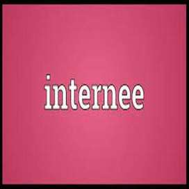 Female Internee Required
