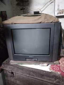 TV hai Sonyki