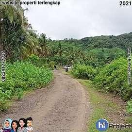 Dijual Tanah kavling di Selong Belanak Lombok tengah T506