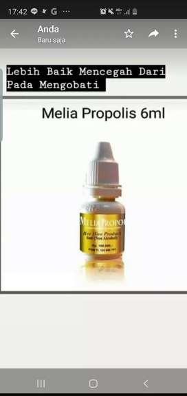 Melia propolis 6ml 30ml 55ml
